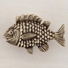 Fun Fish Cabinet Knob - Antique Brass (DPLAP) by Acorn