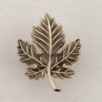 Leaf Cabinet Knob - Antique Brass (DQ4AP) by Acorn