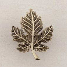 Leaf Cabinet Knob - Antique Brass (DQ4AP) by Acorn