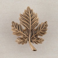 Leaf Cabinet Knob - Museum Gold (DQ4GP) by Acorn