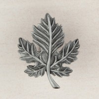 Leaf Cabinet Knob - Antique Pewter (DQ4PP) by Acorn