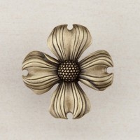 Dogwood Cabinet Knob - Antique Brass (DQ6AP) by Acorn