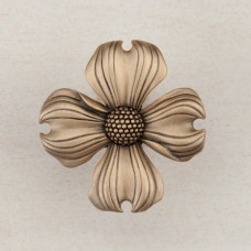 Dogwood Cabinet Knob - Museum Gold (DQ6GP) by Acorn