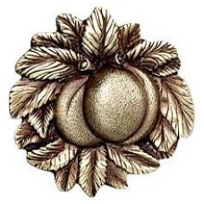 Georgia Peach Cabinet Knob - Antique Brass (NHK-154-AB) by Notting Hill